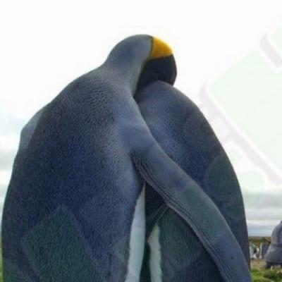 Tristeza pinguinsística