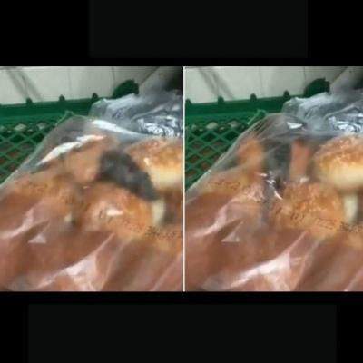 Lanchonete fecha apos pães virem com um surpresa extra