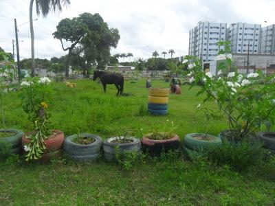 Praça dos pneus e haja dengue