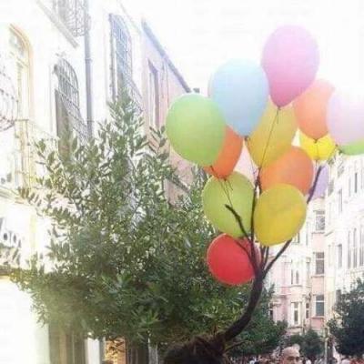 Porta Balões
