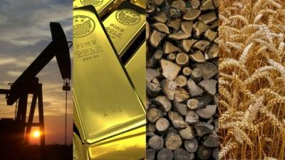 Commodities: Tudo sobre – O que são? Quais os tipos? Como investir?