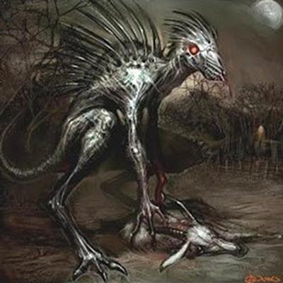 Criatura misteriosa no Paraná, você acredita?