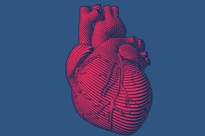 Cientistas apresentam coração impresso em 3D a partir de tecidos humanos