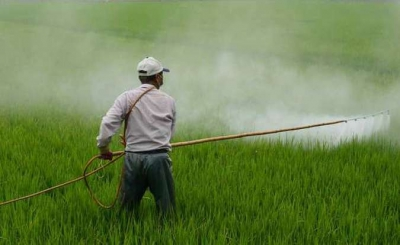 Glifosato: o polêmico herbicida em todo mundo