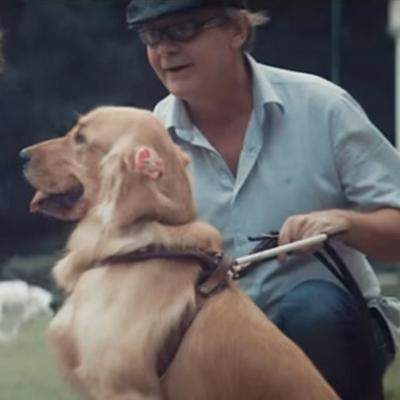 Humanos-guias que ajudam cães cegos