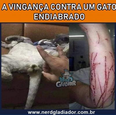 A vingança contra um Gato endiabrado
