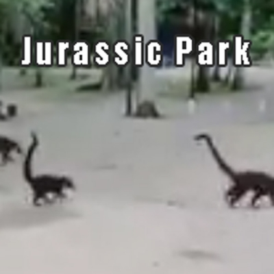Jurassic Park na vida real