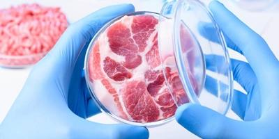 Em presa Israelense cria bife em laboratório