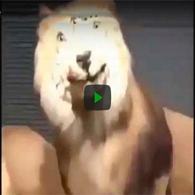 Vídeos retardados da semana #26