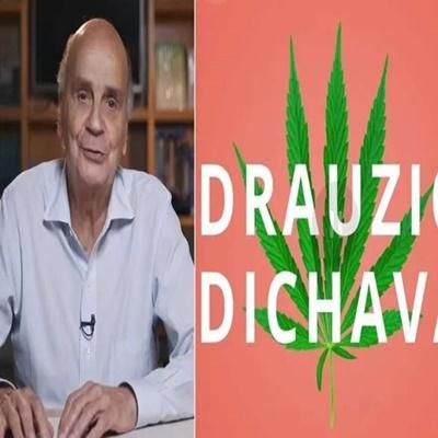 'Drauzio Dichava'! Médico explica tudo que você precisa saber sobre maconha (ou