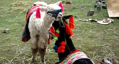 10 curiosidades sobre Cusco que você precisa saber