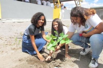 Uma geração semeando o verde