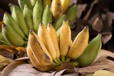Cor da Banana: Qual é a melhor para a Saúde?