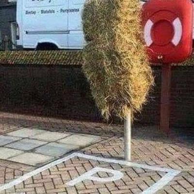Estacionamento equino