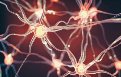 Cientistas criam implante que produz palavras a partir de ondas cerebrais