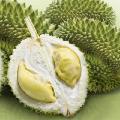 Durião a fruta mais fedorenta do Mundo!