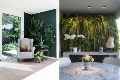 Dicas de plantas incríveis para montar um jardim vertical em casa