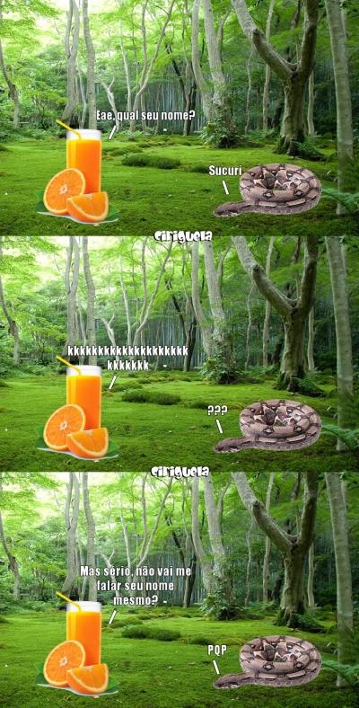 Uma conversa entre um suco e uma cobra