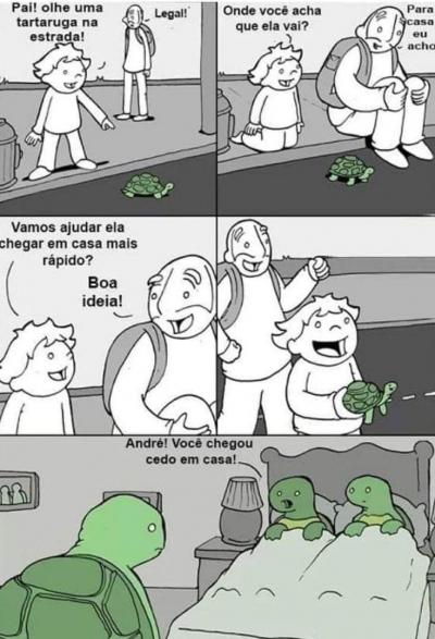Ajude as tartarugas