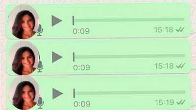 Os Áudios  do whatsapp #2