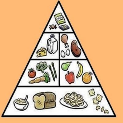 A pirâmide alimentar de um gordo