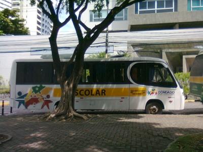 Transporte escolar irregular