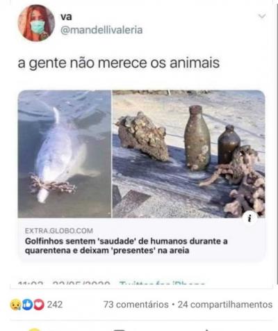 A gente não merece os animais