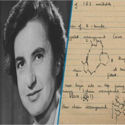 Pessoas influentes na biologia - Rosalind Franklin