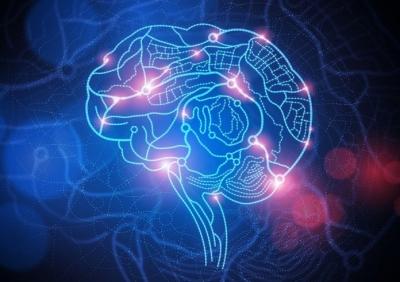 'Google brains'? Empresa se une a universidade e mapeia cérebro humano