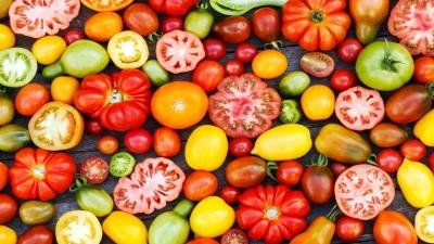Receitas e passeios para comemorar e aproveitar o Dia do Tomate
