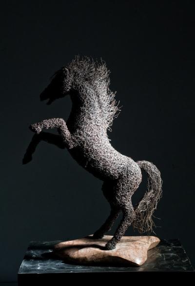 Esculturas esculpidas de arames enfarpados [11 fotos]
