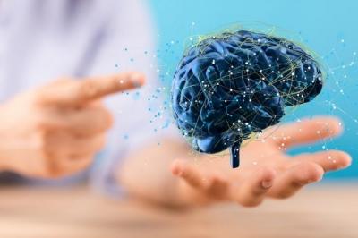 Memória ajuda cérebro a resolver problemas