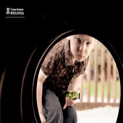 Qual a importância da curiosidade na infância?