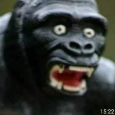 Godzilla Vs King...