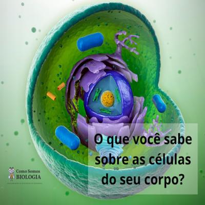 O que você sabe sobre as células do seu corpo?