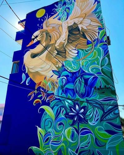 Artista cobre prédios inteiros com sua arte