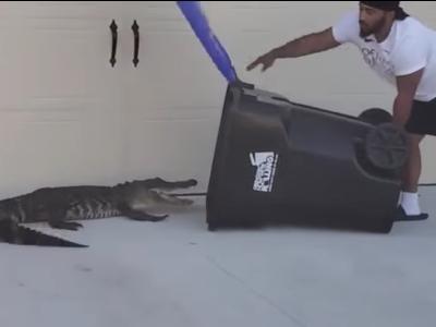Homem pega um crocodilo com uma lata de lixo e se torna viral