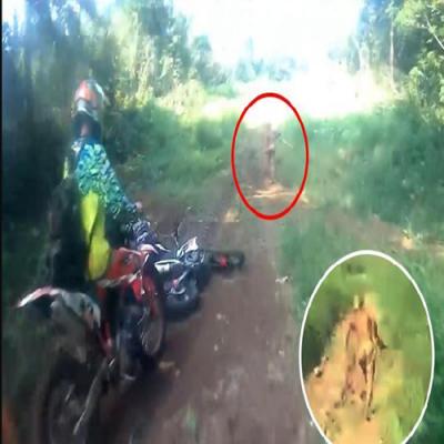 Estranha criatura filmada na Indonésia,real ou fake?