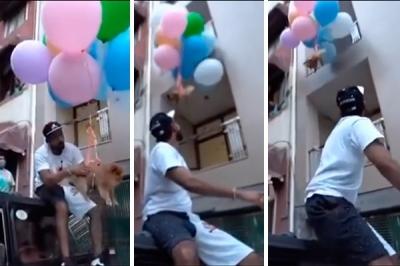 YouTuber é preso após amarrar cachorro a balões e faze-lo voar