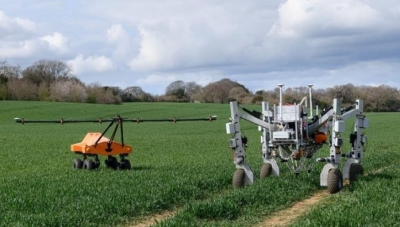 Robôs agricultores eliminam ervas daninhas com eletricidade e sem agrotóxicos