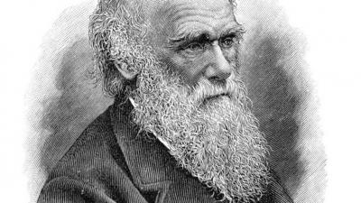 Universidade de Cambridge denuncia roubo de cadernos de Darwin