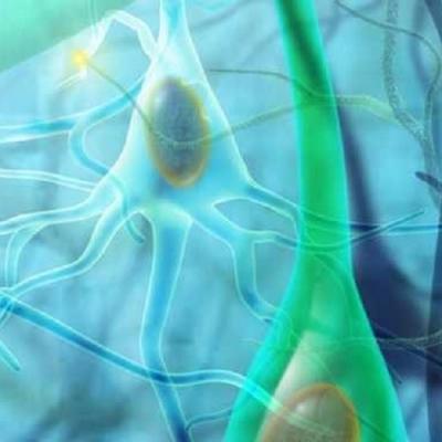 Doenças da alma - Fibromialgia