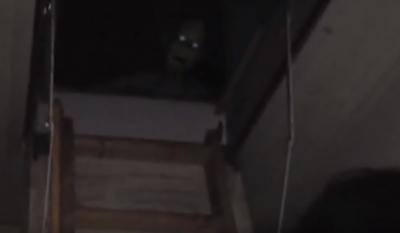 Vídeo Apavorante: Estranha criatura morando no sótão