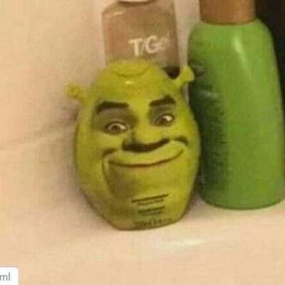 Quando tem um shampoo do sherek no seu banheiro!