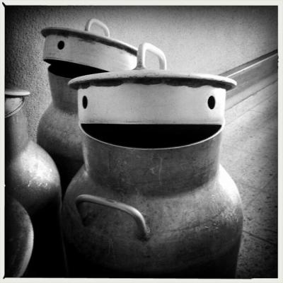 Veja alguns rostos que resolveram aparecer em lugares estranhos #4