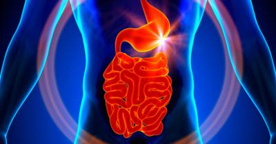 3 Remédios caseiros para gases no estômago