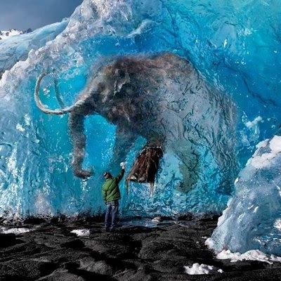 Encontrado corpo de mamute quase vivo