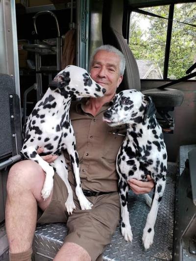 Fotos mostram reação de cachorros ao ver o carteiro #2