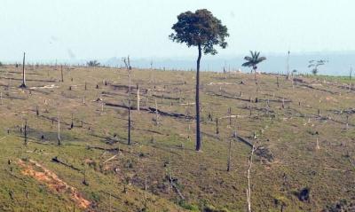 Governo prorroga presença das Forças Armadas na Amazônia Legal