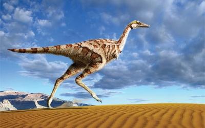 Os dinossauros mais estranhos que já existiram